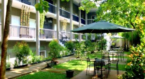 Safwah Bintaro, Hotel Tersembunyi Namun Asri
