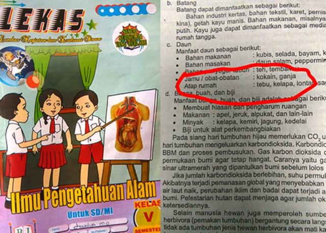 Buku LKS IPA kelas 5 SD berisi anjuran narkoba. Foto: istimewa