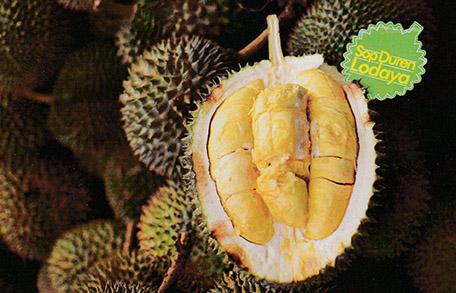 78 Gambar Sop Durian Lodaya HD