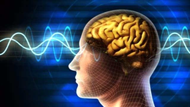 Awas, Gadget Berpontensi Merusak Otak Anak