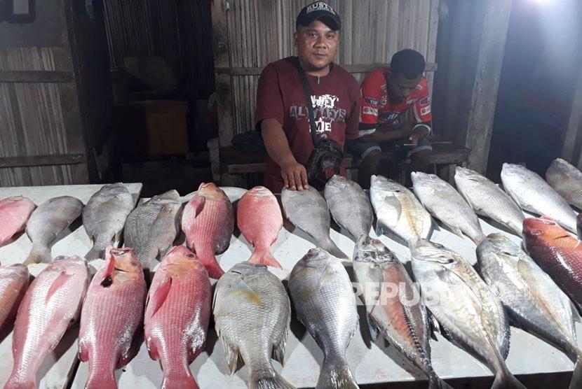 Berbagai Jenis Ikan Harga nya Melonjak