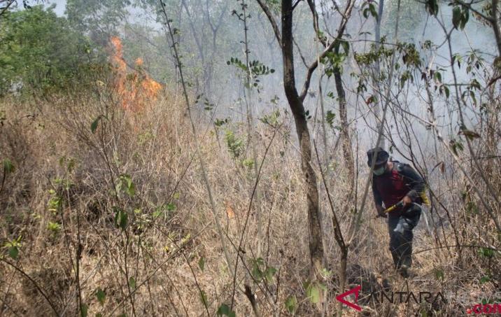 Kebakaran Hutan Terus Meluas di Gunung Ciremai