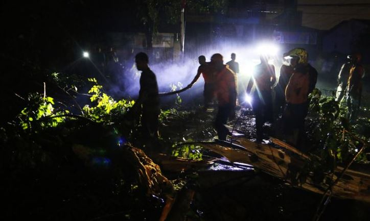 Penebangan Pohon Antisipasi Angin Kencang