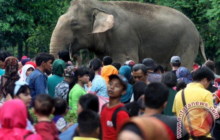 Taman Margasatwa Ragunan Dijaga 152 Polisi Dan TNI Saat Liburan
