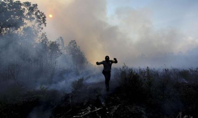 Kebakaran Hutan Karhutla Riau Mencapai 2.589 Hektare, 11 Tersangka Diamankan