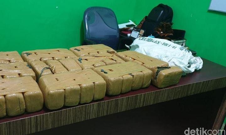 Sepasang Kekasih Tertangkap Bawa Ganja 40 Kg Di Riau