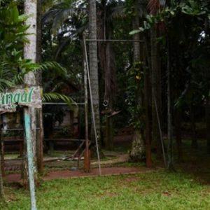 5 Hal Menarik Wisata Hutan Tanah Tinggal Tangerang Selatan