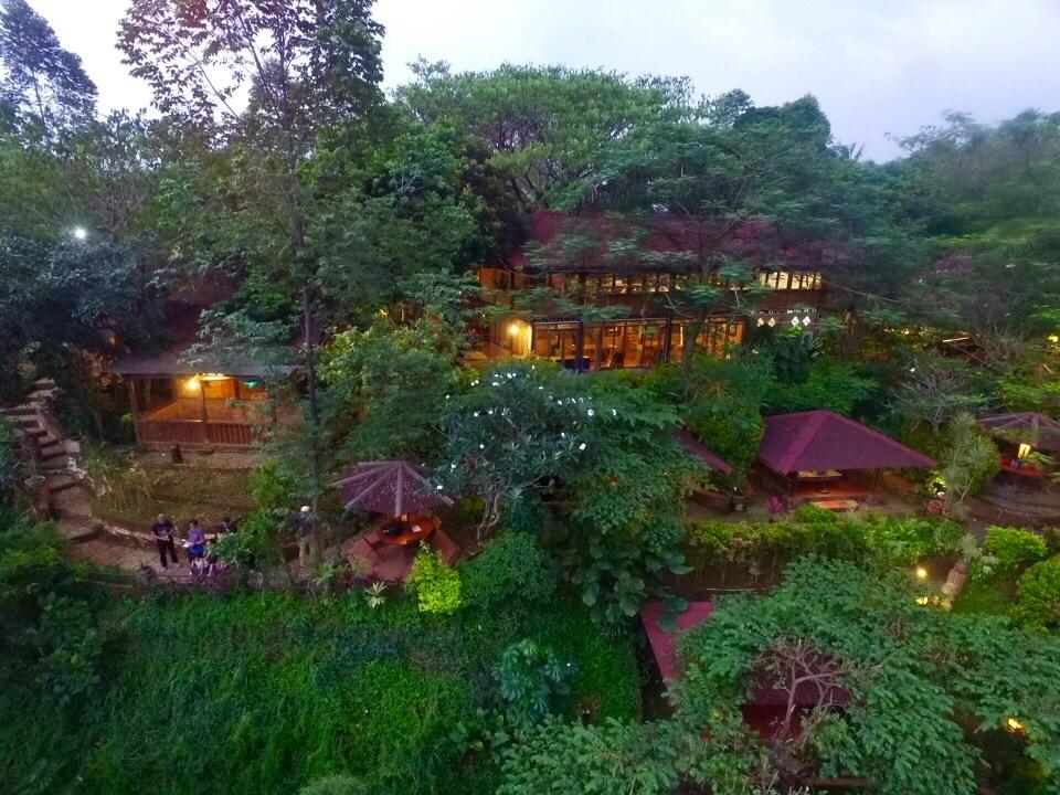 4 Tempat Makan Bernuansa Alam di Tangsel