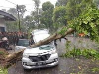 Pemerintah Kota Bogor Mencatat 1.697 Bangunan Terdampak Angin Kencang