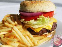 Cara Menghindari Godaan Makanan Junk Food Menurut Studi