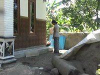 Cerita Warga Pasuruan Yang Rumahnya Diserbu Ulat Bulu