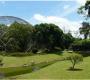 Wisata Edukasi Taman Burung di Taman Mini Indonesia Indah (TMII)
