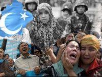 KAMMI Minta Pemerintah Desak China Untuk Buka Akses Informasi Terkait Isu Uighur