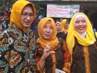 Walikota Tangsel Resmikan TBM Buaran Hijau