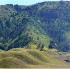 Hijau Bagai Permadani, Begini Cantiknya Bukit Teletubbies Bromo